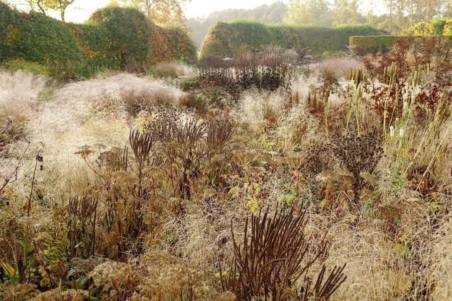 Oudolf Garden, Hummelo, Netherlands