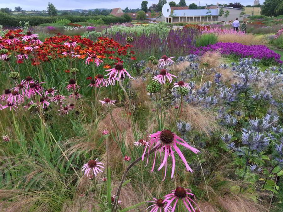 Oudolf Field, Hauser & Wirth Somerset, Bruton, UK